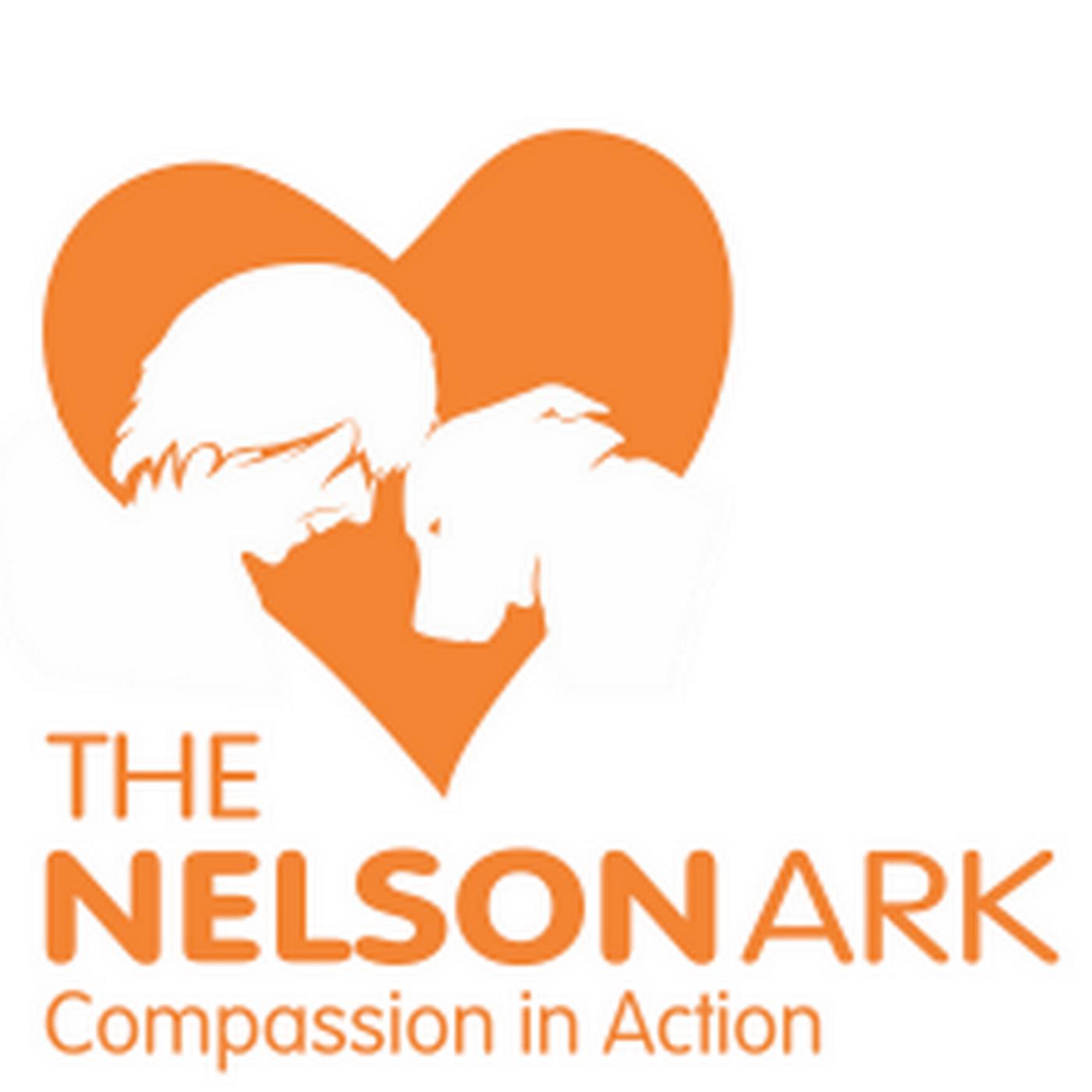 https://cdn.accessradio.org/StationFolder/freshfm/Images/Nelson-Ark.png