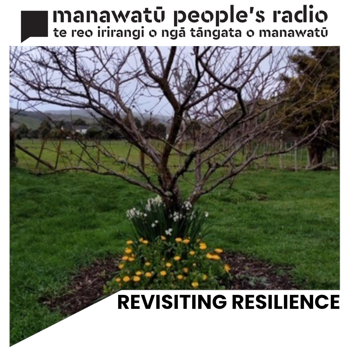 Revisiting Resilience