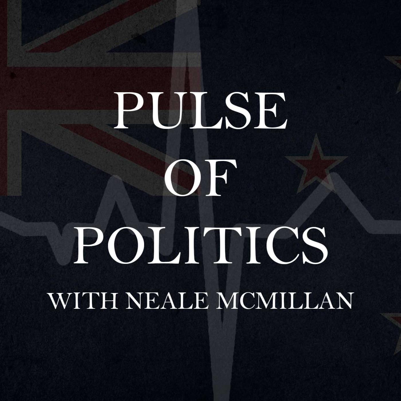 Pulse Of Politics - 05-07-2020 - Dr Ben Peters - The Opportunities Party
