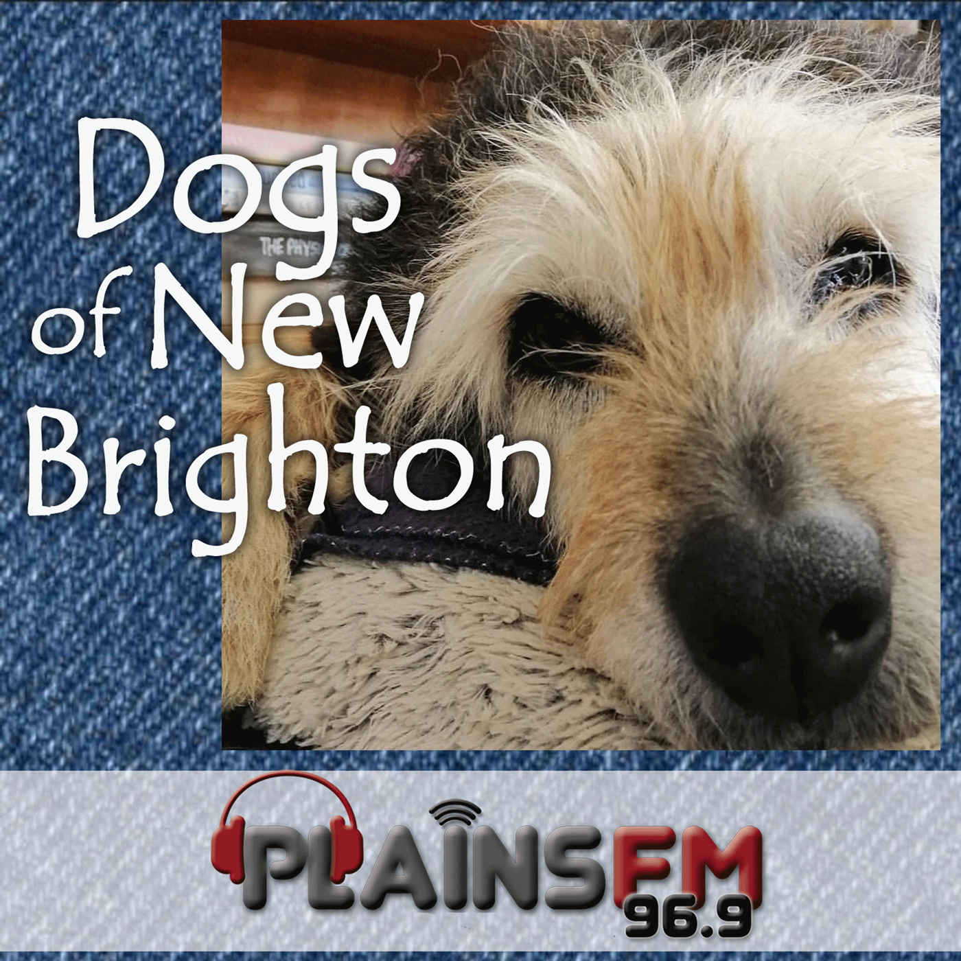 https://cdn.accessradio.org/StationFolder/plainsfm/Images/DogsofNewBrighton.png