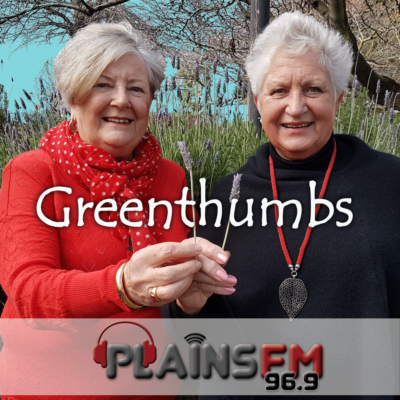 Greenthumbs in Canterbury-16-12-2019 Christine Blance